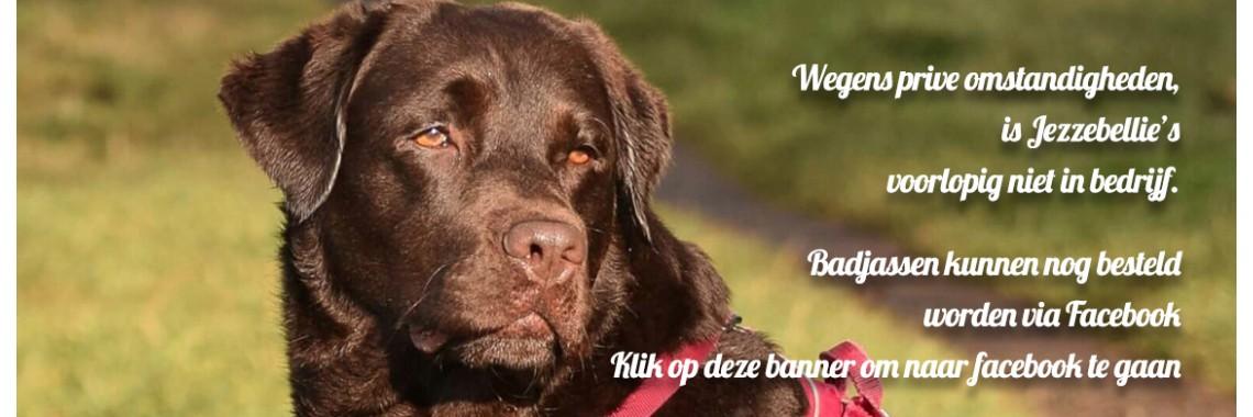 Jezzebellies.nl